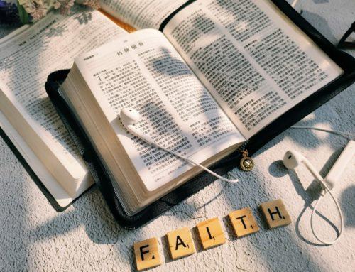 Faith is the Reason